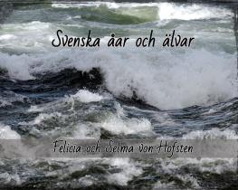 Svenska åar och älvar