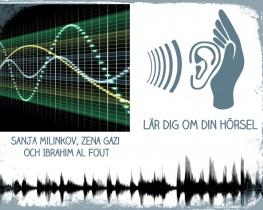 Lär dig om din hörsel