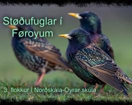 Støðufuglar í Føroyum